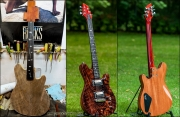 Guitare Dany montage